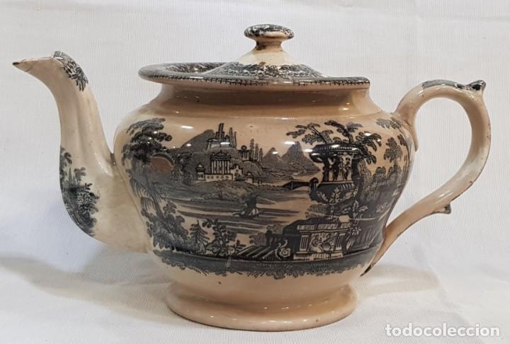 ANTIGUA CAFETERA / TETERA DE SARGADELOS ANTIGUO (Antigüedades - Porcelanas y Cerámicas - Sargadelos)