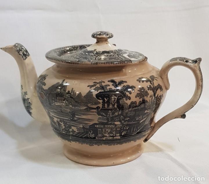 Antigüedades: Antigua cafetera / tetera de Sargadelos antiguo - Foto 2 - 131288255