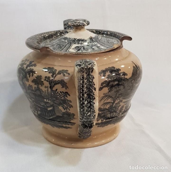 Antigüedades: Antigua cafetera / tetera de Sargadelos antiguo - Foto 4 - 131288255