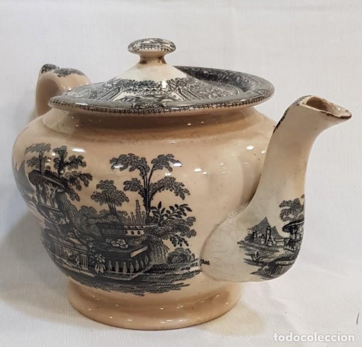 Antigüedades: Antigua cafetera / tetera de Sargadelos antiguo - Foto 5 - 131288255