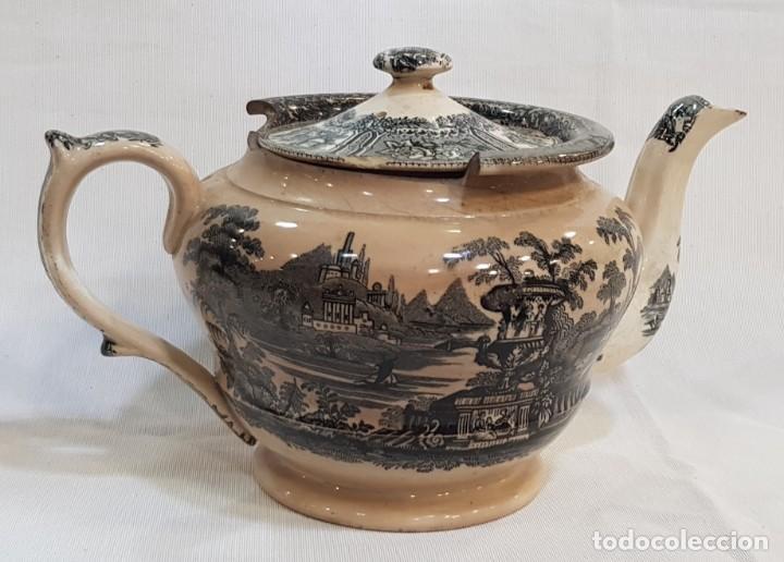 Antigüedades: Antigua cafetera / tetera de Sargadelos antiguo - Foto 6 - 131288255