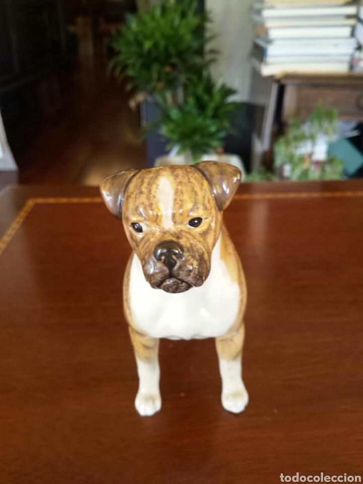 Antigüedades: Perro porcelana Beswick - Foto 2 - 131436214
