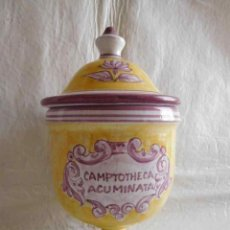 Antigüedades: M69 ANTIGUO FRASCO ALBARELO DE FARMACIA EN PORCELANA CON TAPADERA DE CAMPTOTHECA ACUMINATA. FIRMADO.. Lote 131732410