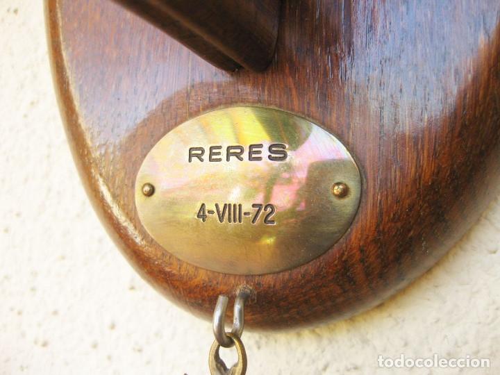 Antigüedades: CUERNA DE REBECO CON MEDALLA HOMOLOGACIÓN. COTO DE RERES. SIERRA DE LA GALLERA. BENEDITO 1972 - Foto 16 - 132260274