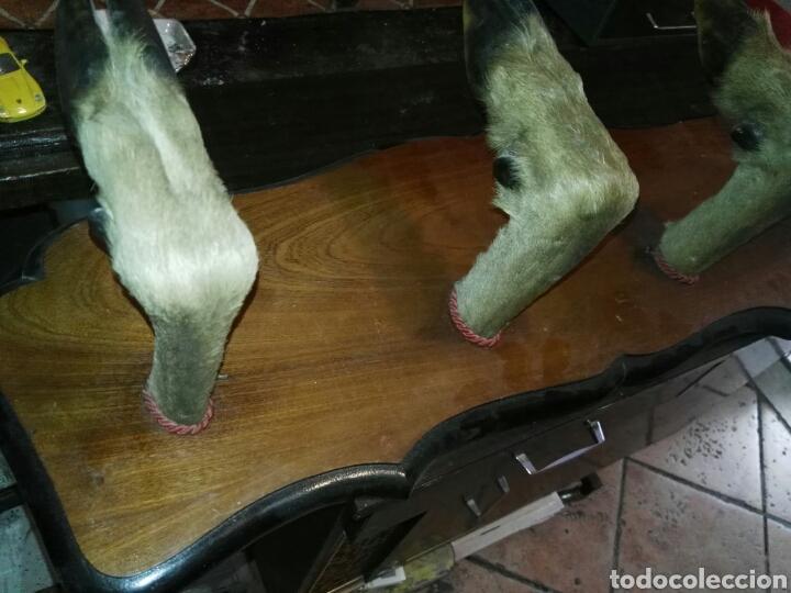 Antigüedades: Percha de cuatro patas ciervo - Foto 2 - 133041673