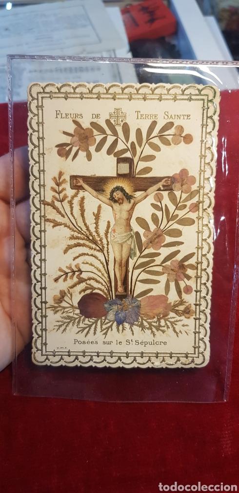 RELIQUIA DE FLORES DE TIERRA SANTA POSADAS SOBRE EL SANTO SEPULCRO BASTANTE ANTIGUO (Antigüedades - Religiosas - Varios)