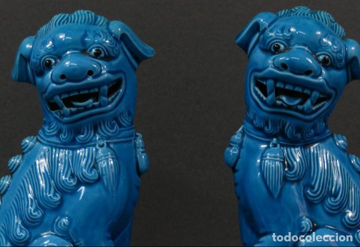 Antigüedades: Pareja Furias Foo cerámica vidriada azul China siglo XX - Foto 2 - 134302802