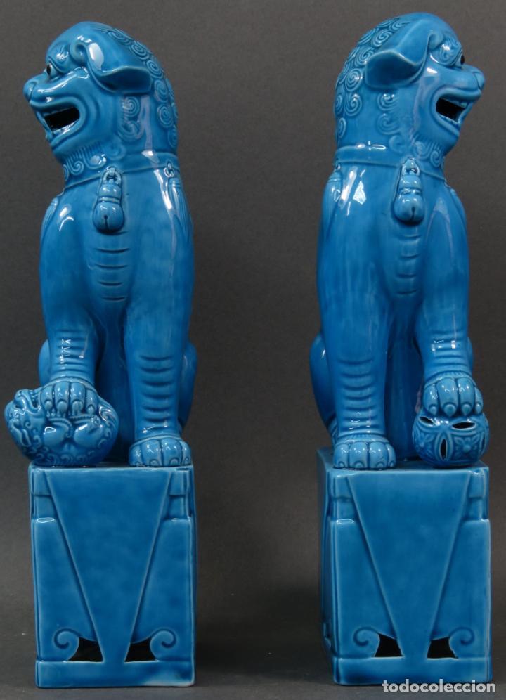 Antigüedades: Pareja Furias Foo cerámica vidriada azul China siglo XX - Foto 3 - 134303026