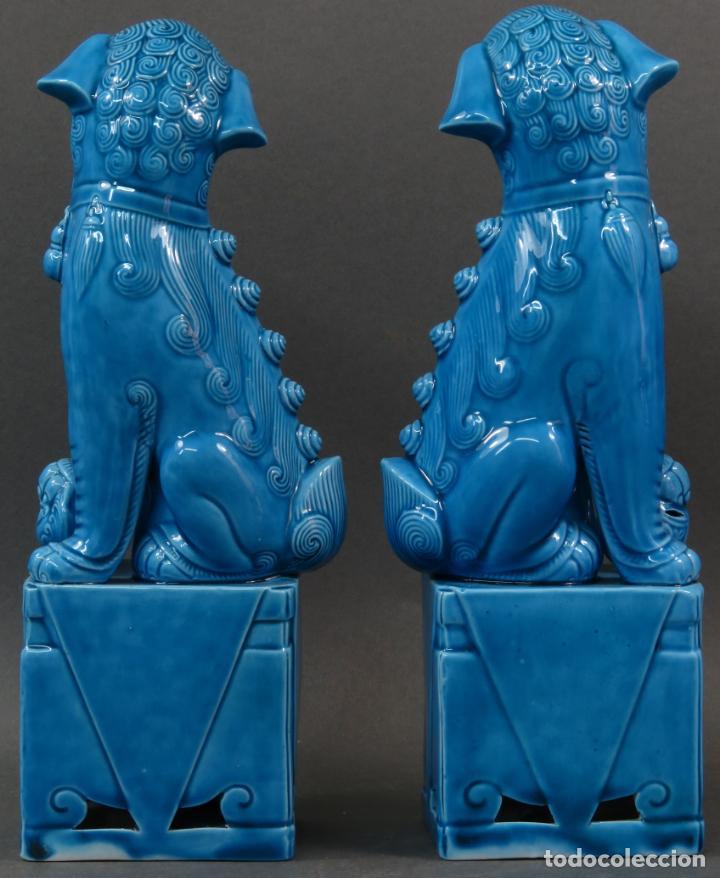 Antigüedades: Pareja Furias Foo cerámica vidriada azul China siglo XX - Foto 4 - 134303026