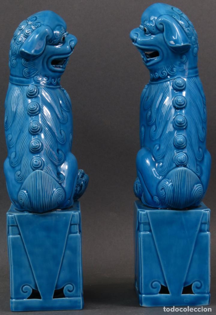 Antigüedades: Pareja Furias Foo cerámica vidriada azul China siglo XX - Foto 5 - 134303026