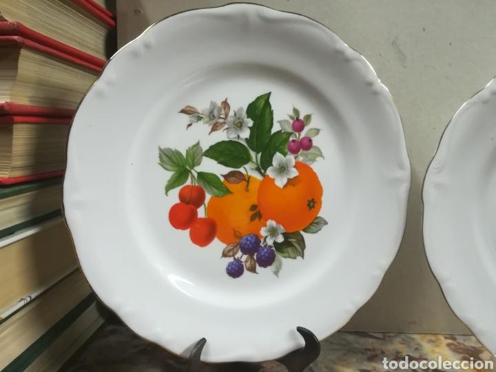Antigüedades: Pareja de platos de porcelana bidasoa - Foto 3 - 135449951