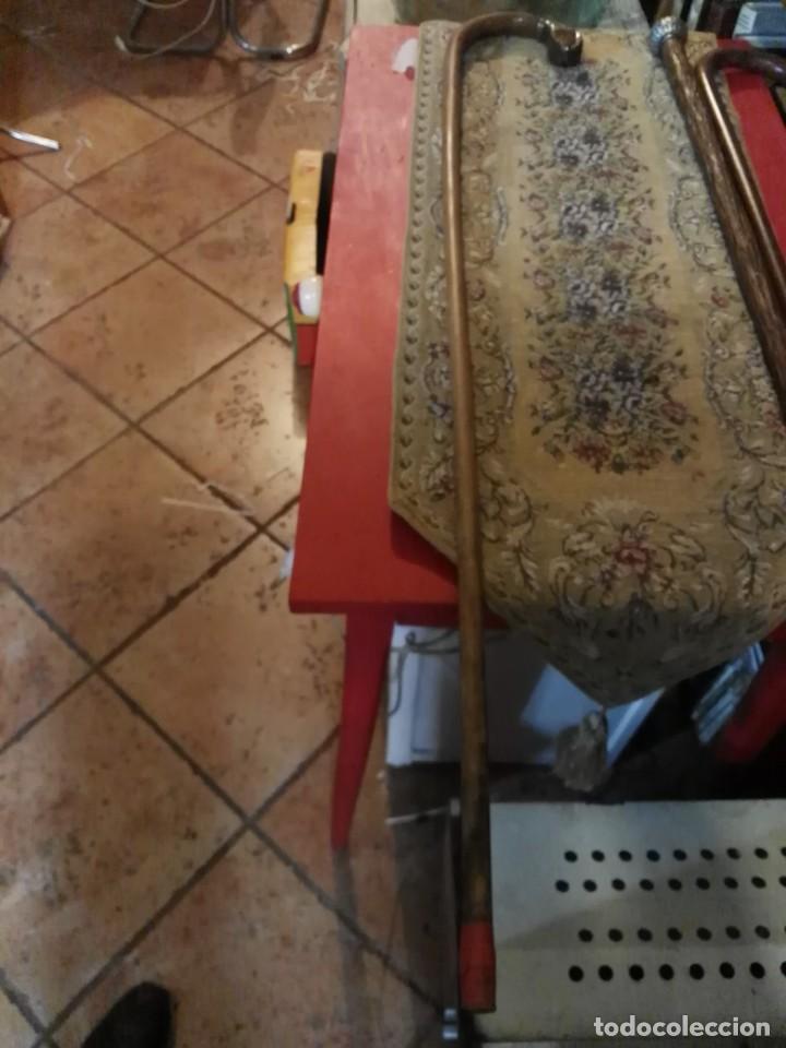 Antigüedades: baston con cabeza de serpiente cobra - Foto 2 - 136171042
