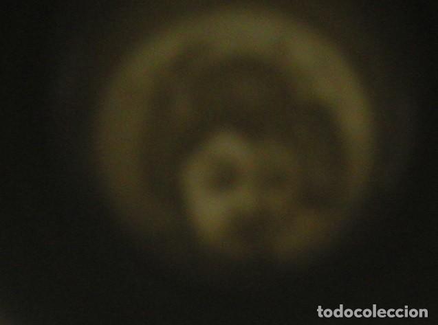 Antigüedades: JUEGO CAFÉ JAPONÉS PAISAJE DORADO FONDO NEGRO MATE CÁSCARA HUEVO FONDO CARA GEISHA KUTANI SATSUMA - Foto 3 - 138605074