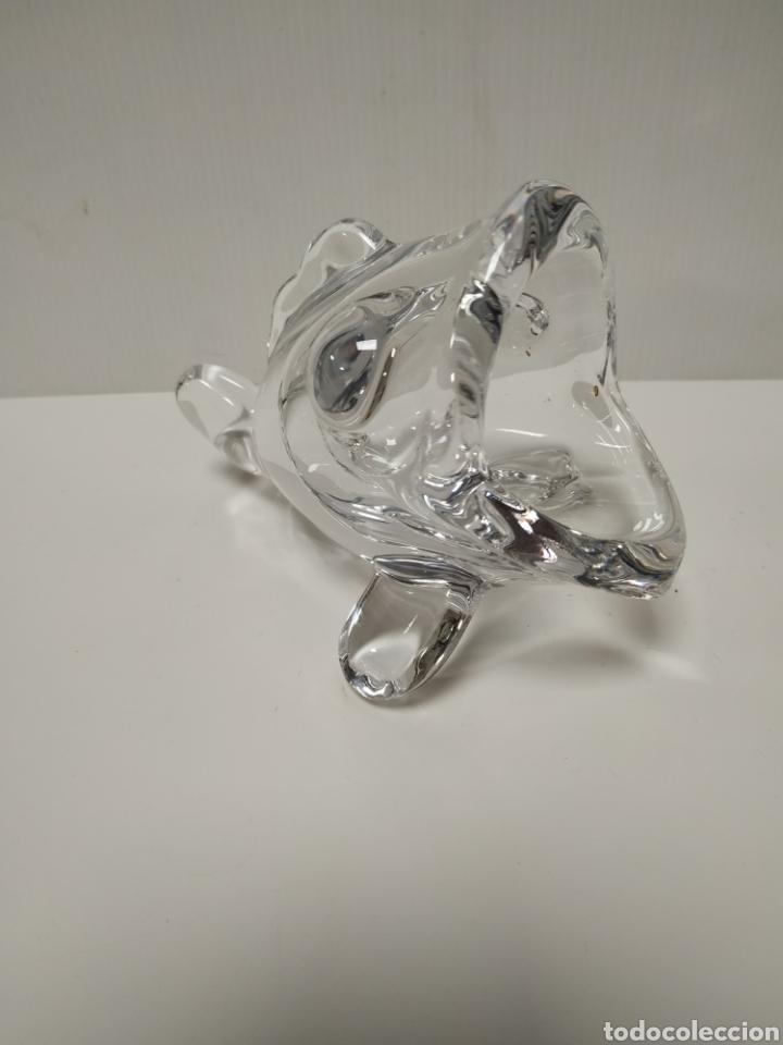 Antigüedades: Pez de cristal para tirar huesos de olivas - Foto 3 - 140299892