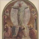 Antigüedades: LÁMINA LITOGRAFIADA RELIGIOSA LA TRANSFIGURACION - FRA. BEATO ANGÉLICO 24X33. Lote 141481822