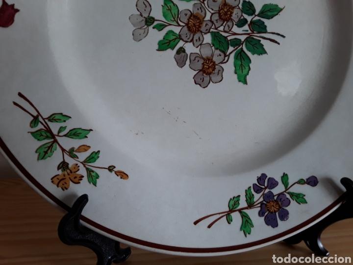 Antigüedades: Plato cerámica francesa Sarreguemines - Foto 2 - 141712281