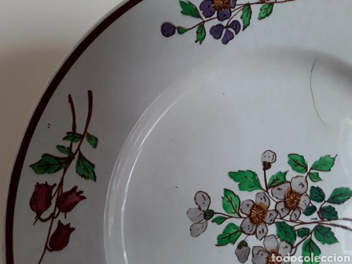 Antigüedades: Plato cerámica francesa Sarreguemines - Foto 5 - 141712281