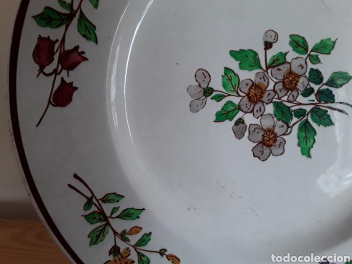 Antigüedades: Plato cerámica francesa Sarreguemines - Foto 6 - 141712281