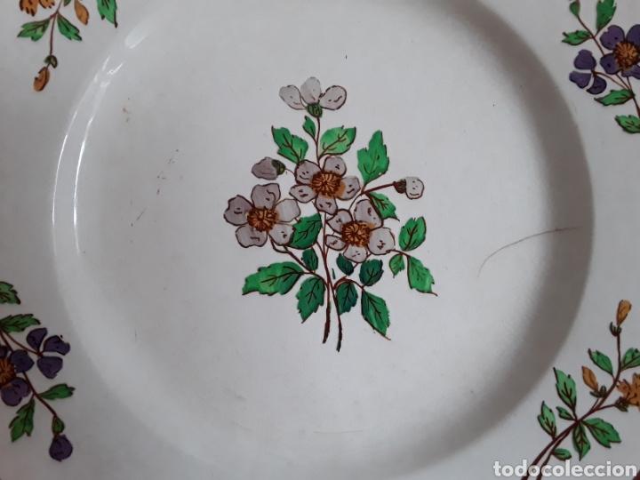 Antigüedades: Plato cerámica francesa Sarreguemines - Foto 7 - 141712281