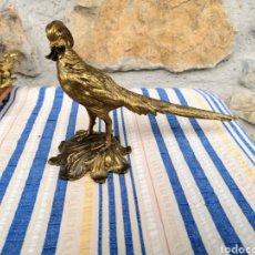 Antigüedades: PRECIOSO FAISÁN DE BRONCE. Lote 141680213