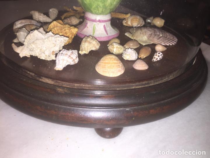 Antigüedades: Antiguo fanal de cristal soplado a mano Mallorquin peana y pomo flores de ropa isabelino siglo XIX - Foto 8 - 143041698