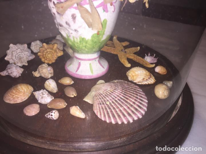 Antigüedades: Antiguo fanal de cristal soplado a mano Mallorquin peana y pomo flores de ropa isabelino siglo XIX - Foto 9 - 143041698