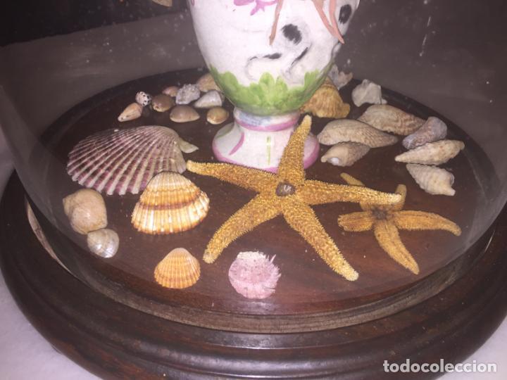 Antigüedades: Antiguo fanal de cristal soplado a mano Mallorquin peana y pomo flores de ropa isabelino siglo XIX - Foto 10 - 143041698