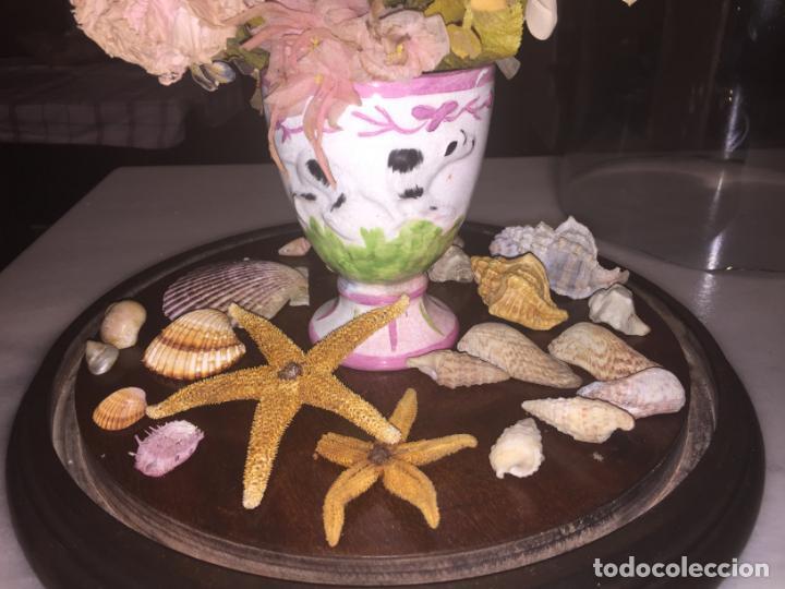 Antigüedades: Antiguo fanal de cristal soplado a mano Mallorquin peana y pomo flores de ropa isabelino siglo XIX - Foto 15 - 143041698