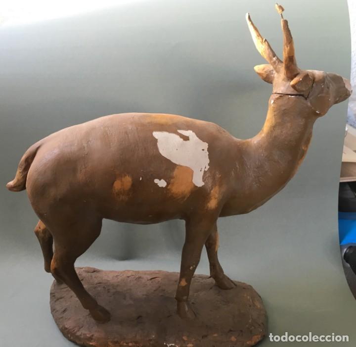 Antigüedades: ESPECTACULAR CIERVO EN ESTUCO DE LOS TALLERES DE OLOT, FIGURA DE PESEBRE? - Foto 7 - 144230886