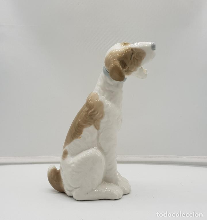 Antigüedades: Bella figura antigua de perro fox terrier bostezando en porcelana Nao By Lladro, sellada en la base - Foto 2 - 145796234