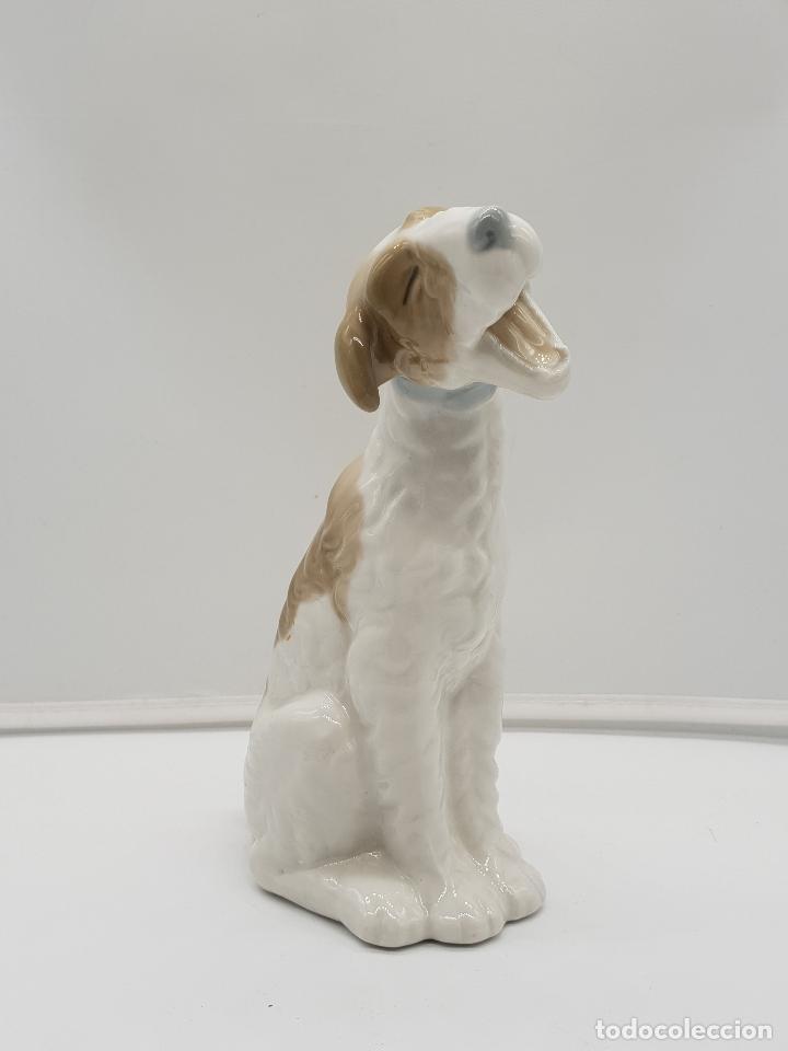 Antigüedades: Bella figura antigua de perro fox terrier bostezando en porcelana Nao By Lladro, sellada en la base - Foto 6 - 145796234