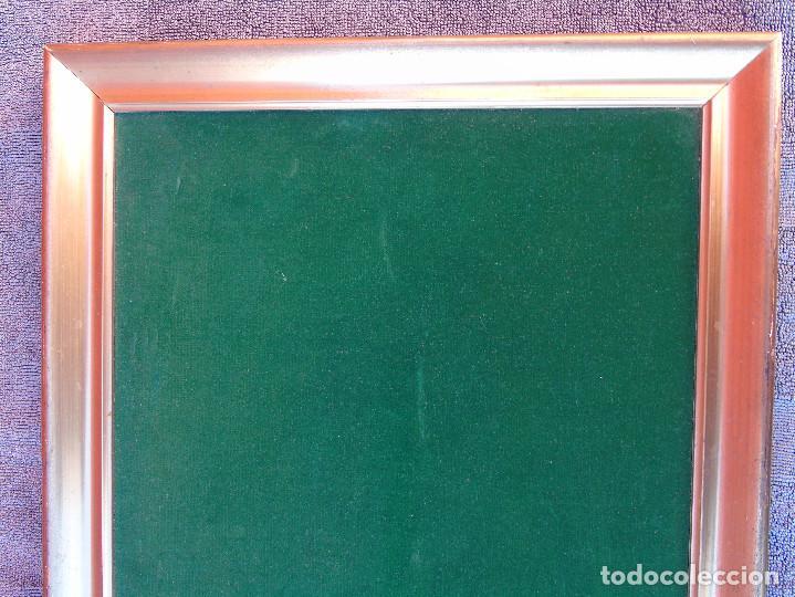 Antigüedades: ANTIGUO MARCO DE MADERA ESTUCADA Y DORADA. PREPARADO COMO EXPOSITOR CON TERCIPELO VERDE - Foto 5 - 147142014