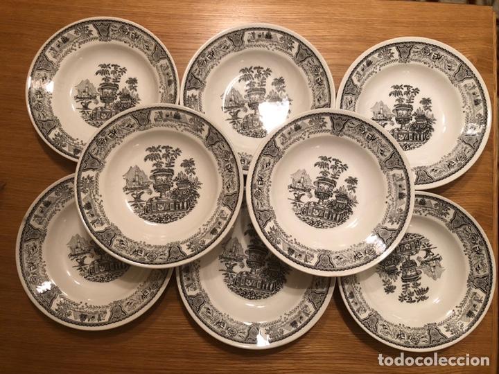 8 PLATOS DE PORCELANA HONDOS GV SEGOVIA (Antigüedades - Porcelanas y Cerámicas - Otras)