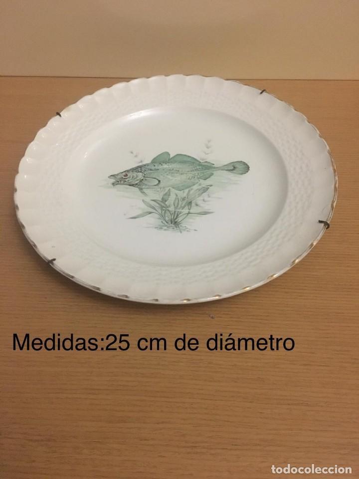 PLATO CERAMICA PONTESA (Antigüedades - Porcelanas y Cerámicas - Otras)