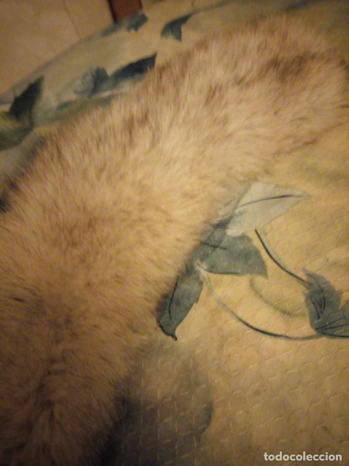 Antigüedades: Bonita estola de piel de zorro plateado. - Foto 2 - 147777202