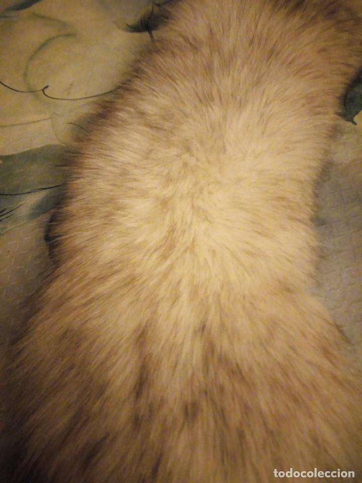 Antigüedades: Bonita estola de piel de zorro plateado. - Foto 4 - 147777202