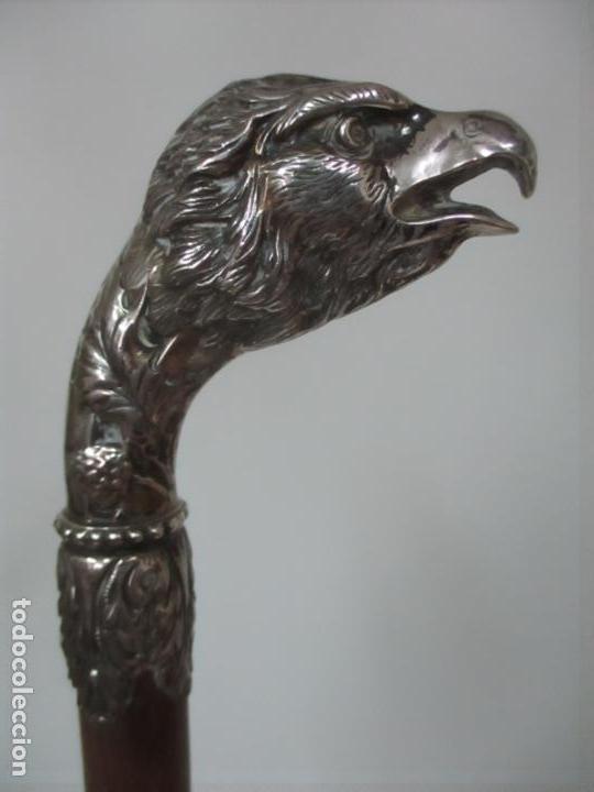 Antigüedades: Bastón en Plata de Ley, Cincelada - Cabeza de Águila - de Colección - Foto 16 - 148039034