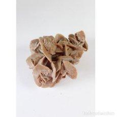 Antigüedades: GRANDE EJEMPLAR ROSA DEL DESIERTO. Lote 149395598