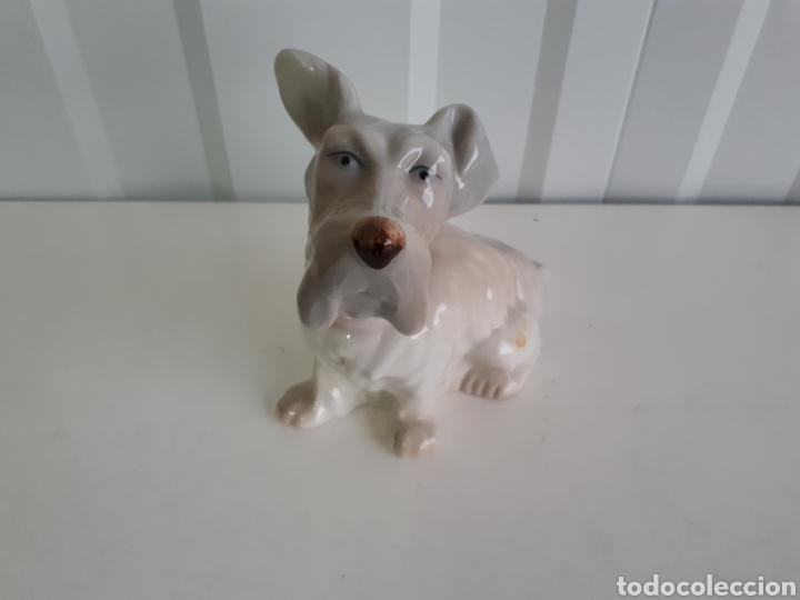 GRACIOSA FIGURA PERRO PORCELANAS E . MIGUEL AÑOS 60 (Antigüedades - Porcelanas y Cerámicas - Otras)