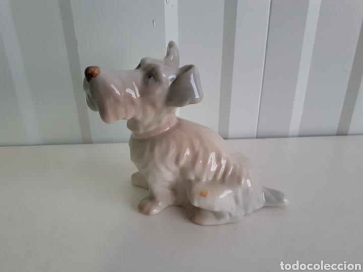 Antigüedades: Graciosa figura perro porcelanas E . MIGUEL AÑOS 60 - Foto 2 - 150265953
