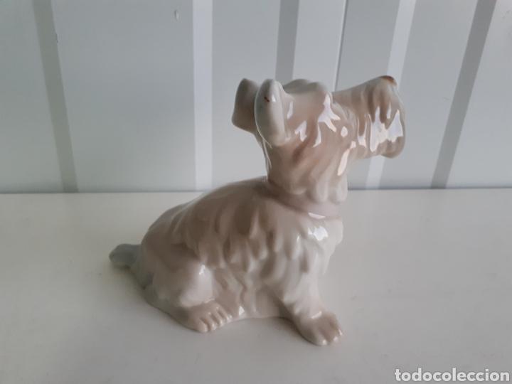 Antigüedades: Graciosa figura perro porcelanas E . MIGUEL AÑOS 60 - Foto 3 - 150265953
