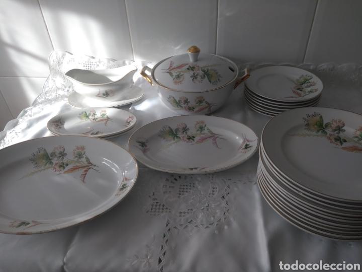 PRECIOSA VAJILLA DE SAN CLAUDIO (Antigüedades - Porcelanas y Cerámicas - San Claudio)