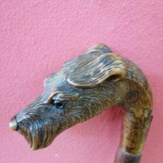Antigüedades: BASTÓN CON CABEZA DE PERRO FOX TERRIER DE MADERA. Lote 151220797