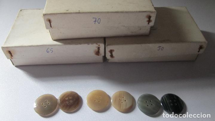 185 ANTIGUOS BOTONES DE GABARDINA (Antigüedades - Moda - Otros)