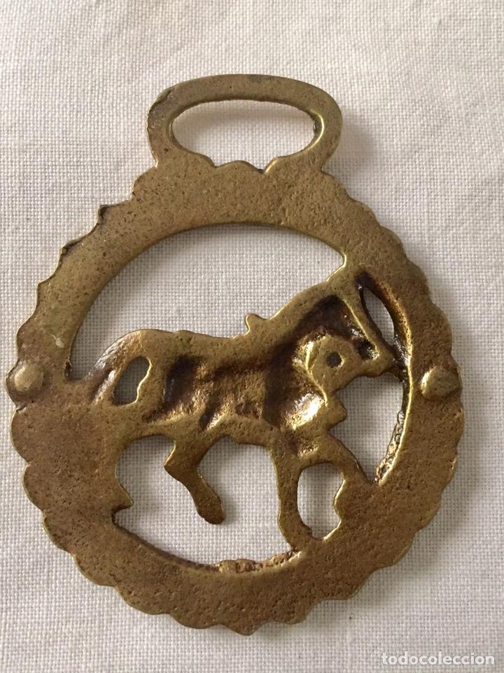 Antigüedades: Antiguo arreo, hebilla , amuleto hipica - Foto 5 - 151604144