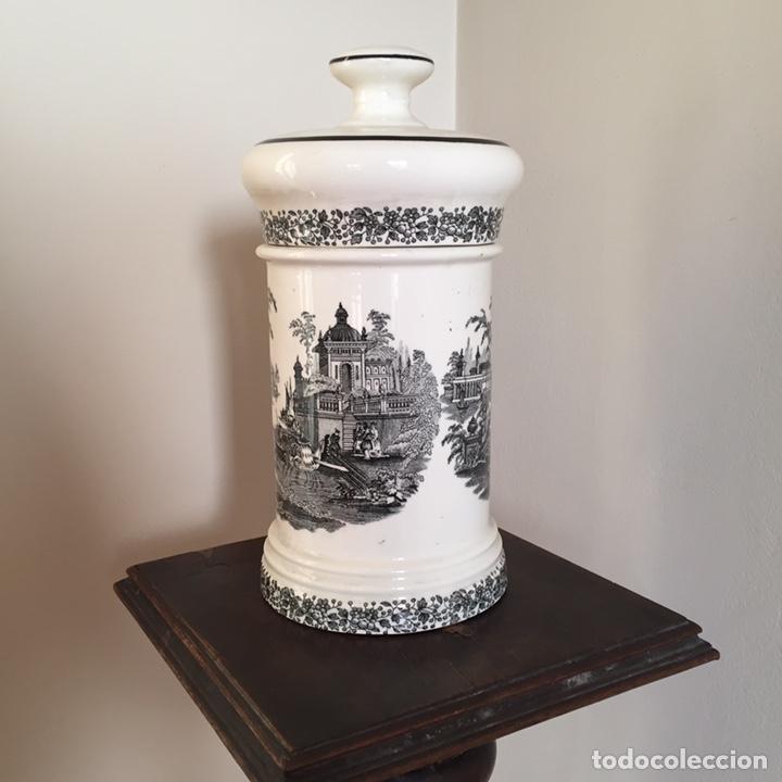Antigüedades: Bote de farmacia - Foto 2 - 152030105