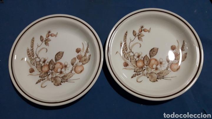 ANTIGUOS PLATOS ROYAL INGLESES 18CM APROX. (Antigüedades - Porcelanas y Cerámicas - Inglesa, Bristol y Otros)