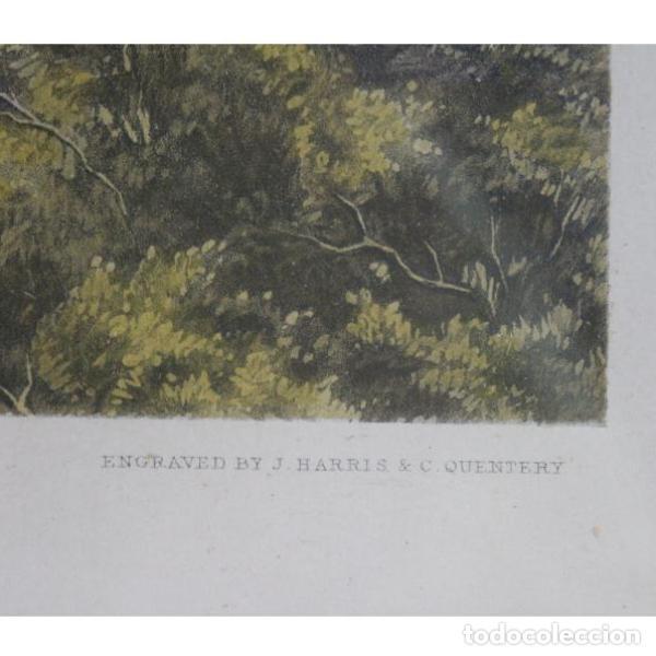 Antigüedades: Anigua lámina de 1857 J.F. HERRING´S original - Foto 3 - 154132170