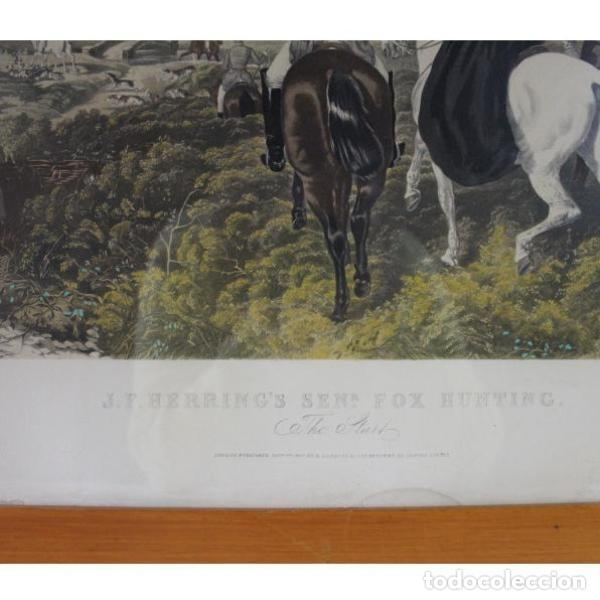 Antigüedades: Anigua lámina de 1857 J.F. HERRING´S original - Foto 5 - 154132170