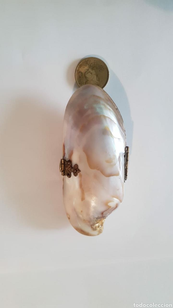 Antigüedades: Estuche monedero pintalabios concha nácar - Foto 4 - 154468477